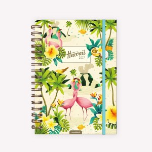 Travel journal 2017 Hawaii