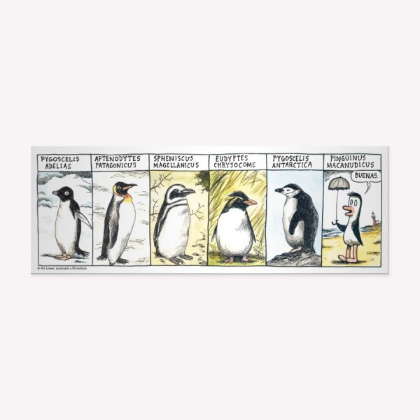 Tira imantada Razas de Pingüinos