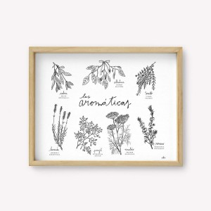 The aromatic herbs Silk-screen