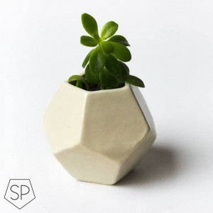 Small Plant Pot Dodecahedron